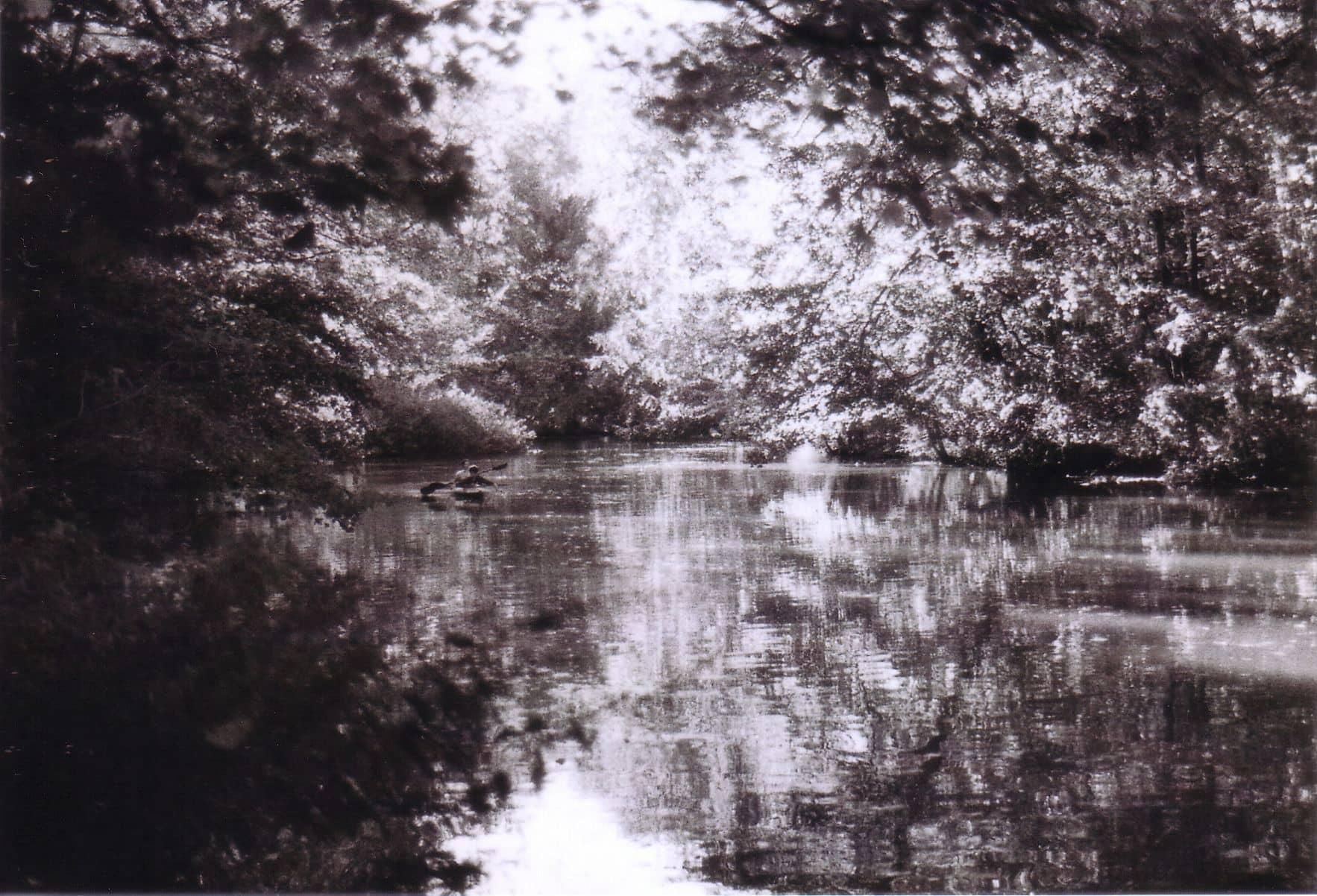 Leipziger Auenwald - Analoge Fotografie by Nadin Wunderlich